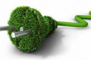 What is the green tariff and how can it help you?